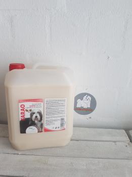 BEA natur Farao Shampoo mit Shea-Butter 5 Liter